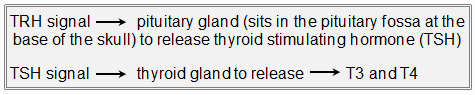 TRH and TSh signal-Definition and causes-Patient-Hypothyroidism